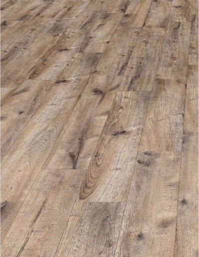 Alpine-oak-nobile,-1130-162